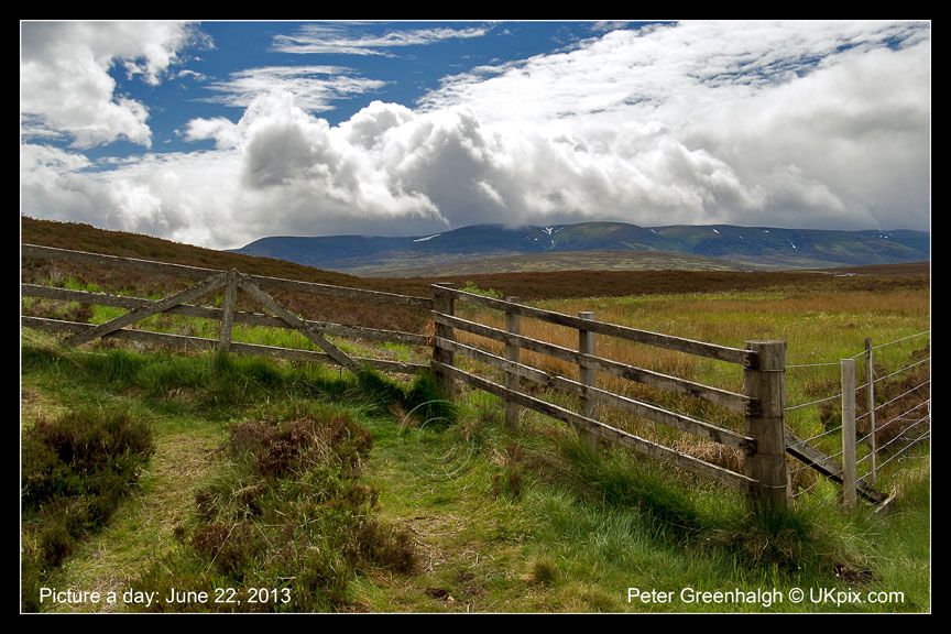 pic a day 2013 - 173 - Peter Greenhalgh